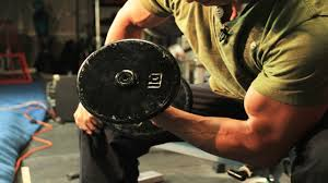Biceps Weight Lifting Workout Arms Gym Training Routine Youtube