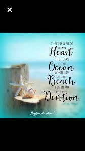 sea shell quotes pin by colleen stusek on sea shell quotes pinterest