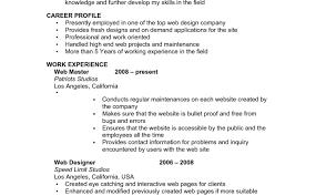 Basic Job Resume Templates Financial Resume Samples Client
