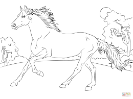 Coloring Pages Running Arabian Horseoloring Page Horses Pages Free