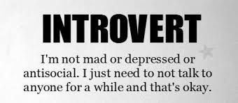 Image result for introvert