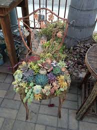 Small Picture 50 Ways Of Creating An Enchanted Succulent Garden In Your Backyard