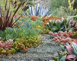 Small Picture Garden Design Garden Design with Succulent Garden Design Ideas