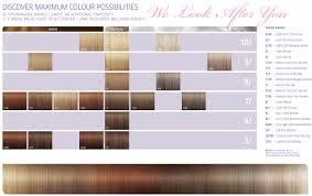 Colour Touch Colour Chart Explicit Paul Mitchell Toner Chart View Wella Colour Touch