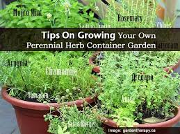 Container Vegetable Garden Plans And IdeasContainer Herb Garden Plans
