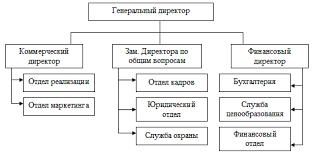 Разработка информационной системы по учёту продукции сети аптек Разраб