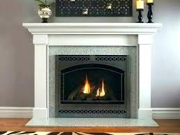 wood burning fireplace insert glass doors door