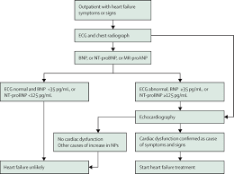 Pathophysiology Of Chf Heart Failure The Lancet
