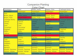 Companion Planting Chart Pdf And Excel Versions Choosing