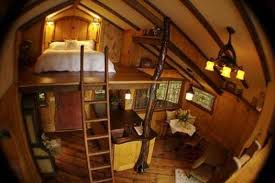 Tree House Inside Ideas Simple Living Tree in the World Places