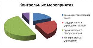 image gif В качестве объектов контроля в отчетном периоде выступали органы государственной власти области 14 контрольных мероприятий органы местного самоуправления