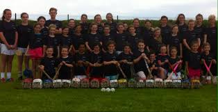 The Camogie Association News