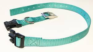Petco Dog Collar Size Chart Sparky Petco E Collar Compatible Mini Teal 3 4 Nylon Double