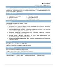 executive resume samples professional resume samples sample customer service resume resume audit manager assistant manager resume auditing manager cover letter