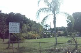 palm city tree farm u0026 nursery tampa tree nursery tampa 692