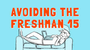 lost in wonderland  college survival guide the freshman 15 is real