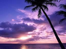 Tahitian Paradise Sunrise Beach ...