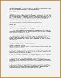 Skills Summary For Resume Examples Exclusive 28 Great Resume Example