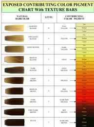 Image Result For Bleach Color Chart In 2019 Aveda Hair