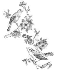 塗り絵の花無料でもらえてすぐ使えるオススメの100枚を紹介 暮らし