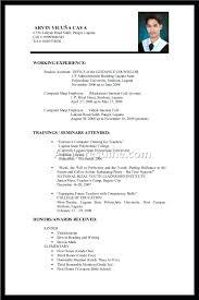Resume No Experience Resume Sample
