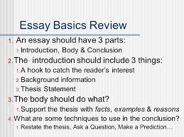 compare contrast essays norm johnson spring ppt  14 essay