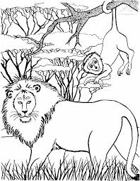 Small Picture Innovative Lion Coloring Pages Nice Colorings 1113 Unknown