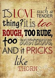 Romeo And Juliet Love Quotes Beauteous 48 Juliet Quotes By QuoteSurf