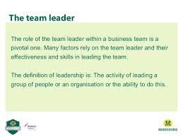 Define Team Leader Define Team Leader Yupar Magdalene Project Org