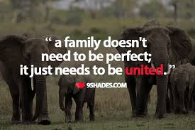 Family Quote Amazing A Family Doesn't Need To Be Perfect It Just Needs To Be United
