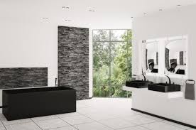 Bathroom Remodeling Illinois Simple Decoration