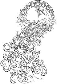 Impressive Peacock Coloring Pages Cool Colorin #7365 - Unknown ...