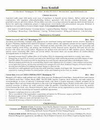 Director Resume Sample Best Of Aml Analyst Resume Sample Fresh