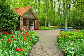 Small Picture Miscellaneous Freshness Flowers House Park Tulips Summer Lovely