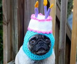 Image result for silly hat