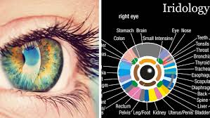 What Does Your Iris Reveal About Your Health?