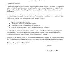Administrative Assistant Responsibilities Resume Admin