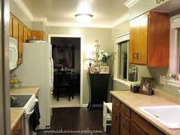 Olive Green Kitchen Cabinets Olive Coloured Kitchen Cabinets Quicuacom