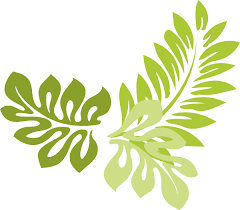 image 4f0c23a932a50e9cdfc9fc8cfb517f leaf border clipped art clip simple jungle
