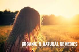 top 11 organic natural hair loss remes