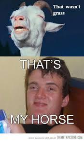 funny-high-guy-meme-goat-W630.jpg via Relatably.com