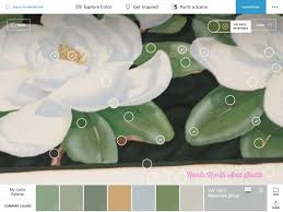 match paint colorMatching Paint Colors is a Quick Snap  Roots North  South