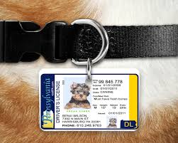 Tag Inspired Drivers License Maryland By Identification Md The Pet -