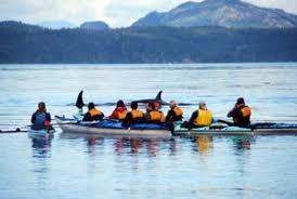 Les Kayaks considérés comme une nouvelle menace. Images?q=tbn:ANd9GcTZBH904aTAbHhoPwAq9wl2thQLSljSmhHMRLnn7uGX7wMdvNyQKA