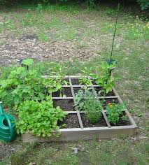 Small Picture Small Vegetable Garden Ideas Uk Best Garden Reference