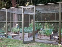 screened in vegetable garden advice on canyon farming from las vegetable whisperer 9 photos