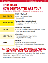 Urine Hydration Chart Australia How Dehydrated Are You Tips For Staying Hydrated On The