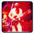 Live Wood album by Paul Weller