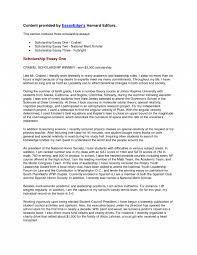 Scholarship Application Essay Example Scholarship Example Essays Essay Example Financial Need