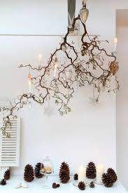 a unique upside down tree